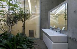 Roślinność w łazience